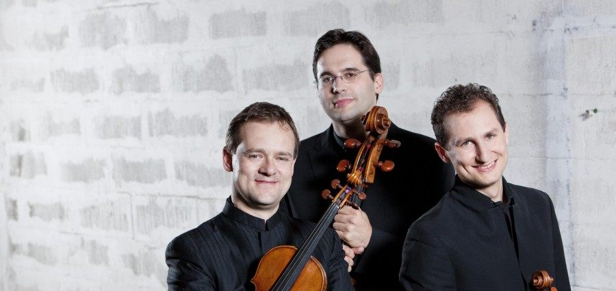 SHMF- Trio Zimmermann