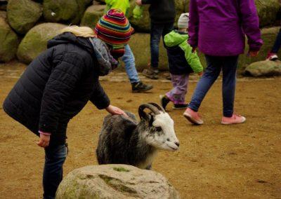 Foto: Tierpark NMS